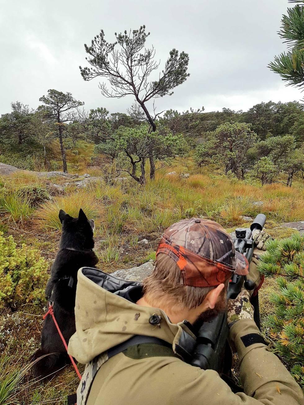 Jakt-med-bandhund-6