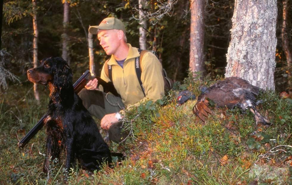 Jakt-med-gammel-hund-8