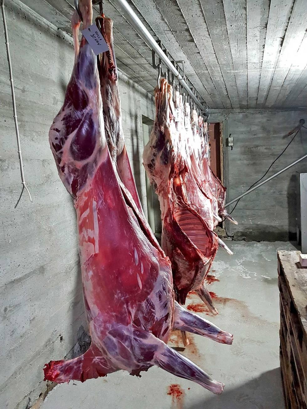 Jegermat-og-kjøttmørning-9