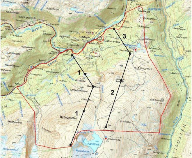 PLANEN: De svarte linjene viser hvor gondolene er tenkt plassert. Nyskridugrove ligger til venstre for heistrasé 1. Illustrasjon: Lom kommune