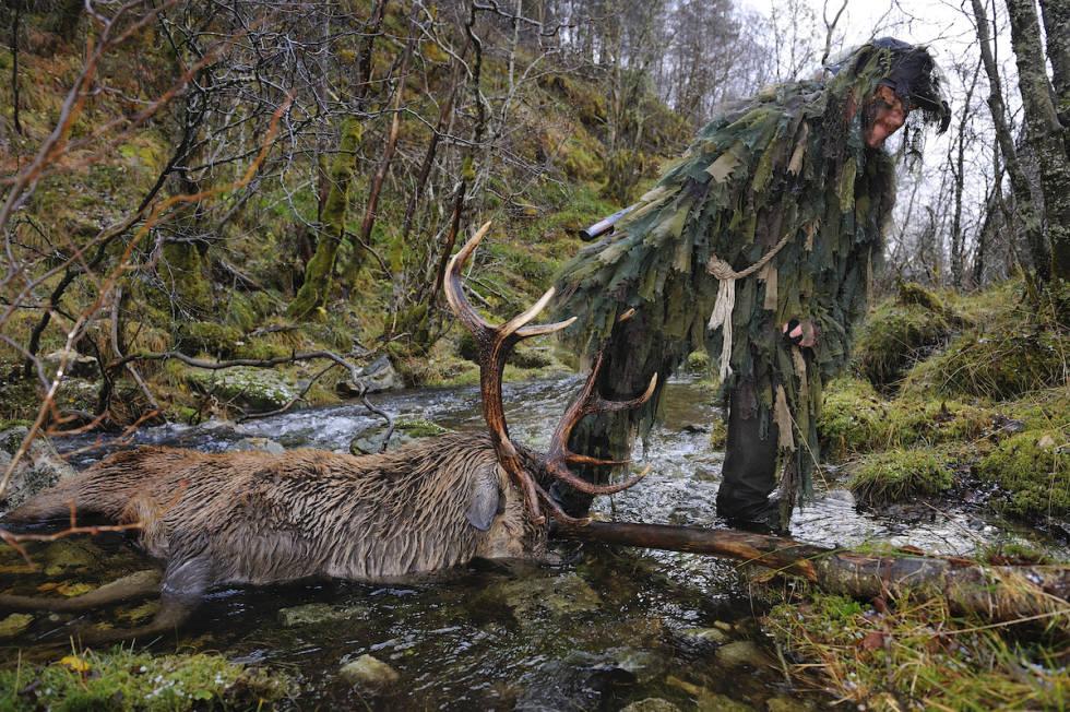 Kurt Oddekalv på jakt med hjort