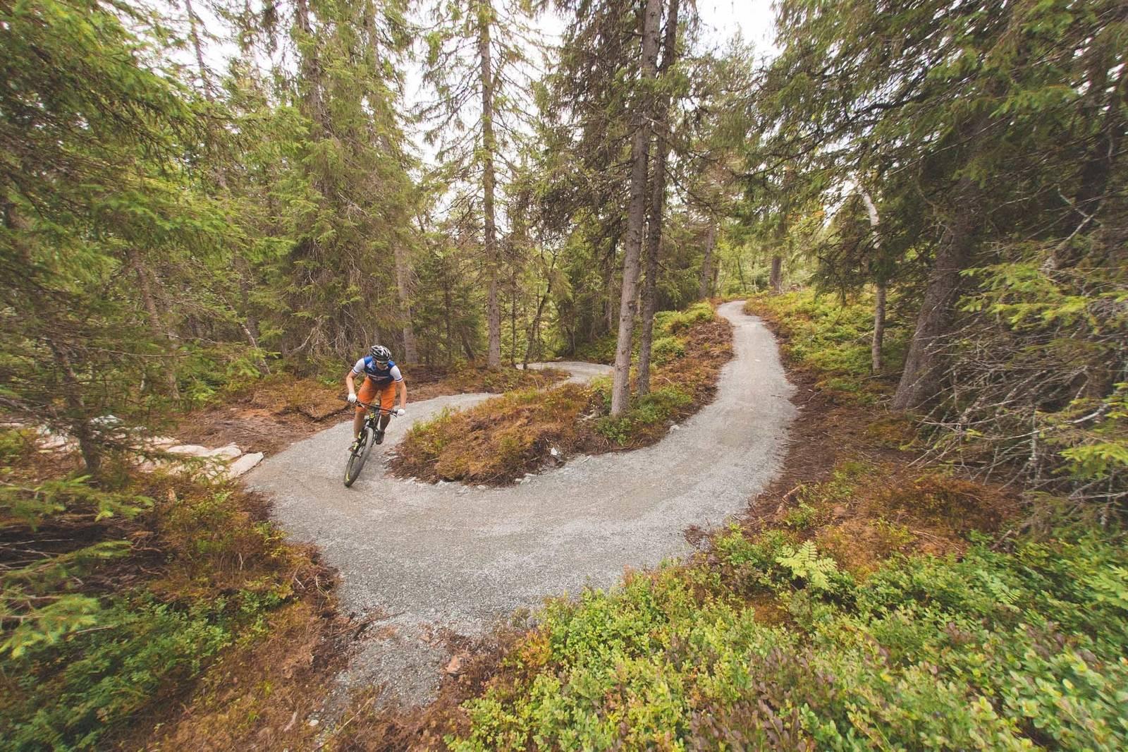 nilsbyen sykkel terrengsykkel