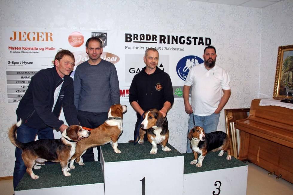 Nordisk-mesterskap-hundeutstilling-4