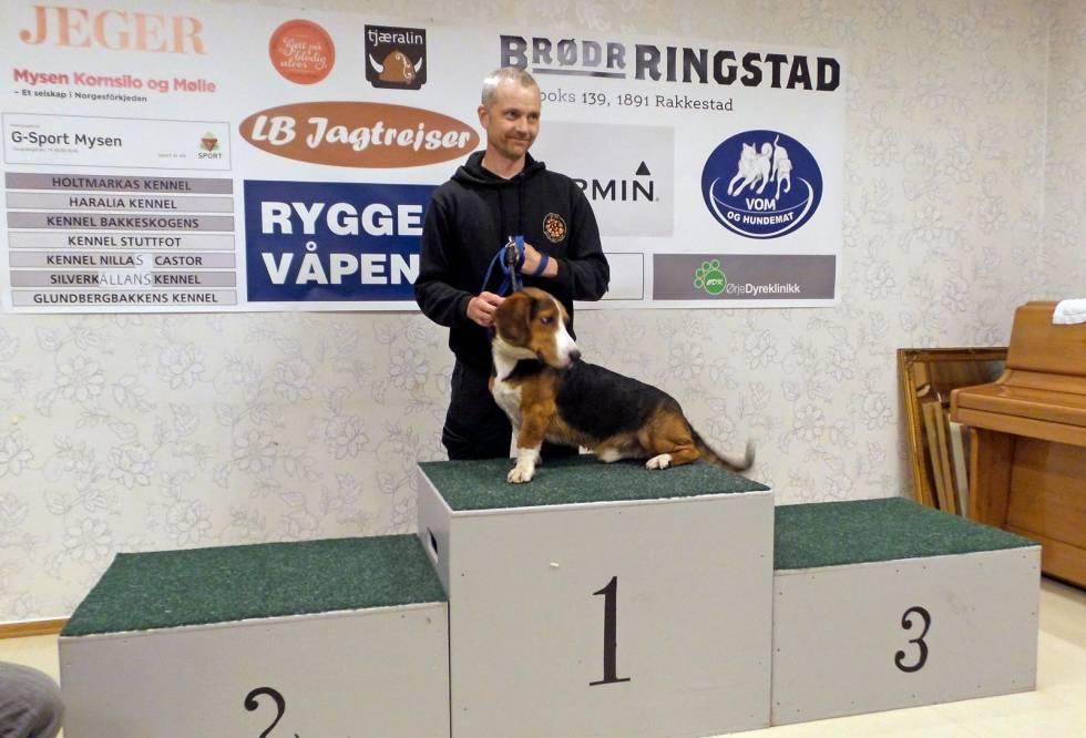 Nordisk-mesterskap-hundeutstilling-5