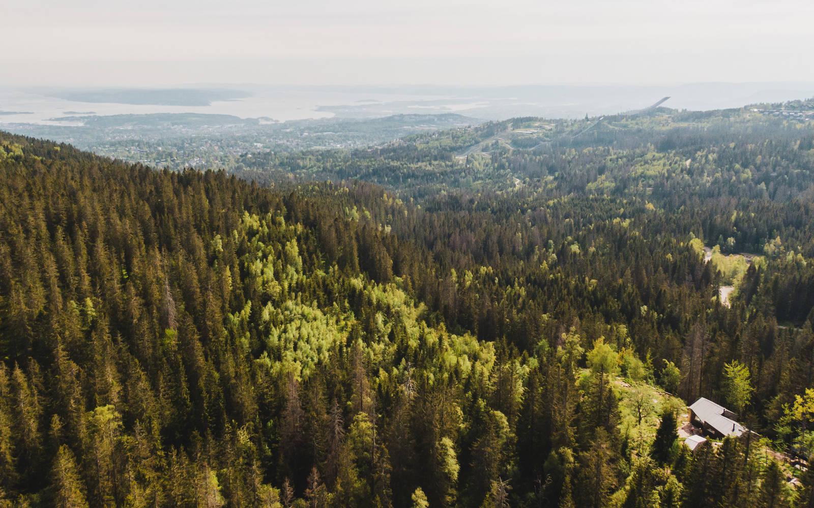 Ett av målene på turen er den mye omtalte Fyglemyrhytta til Oslo DNT. Bilde: Christian Nerdrum