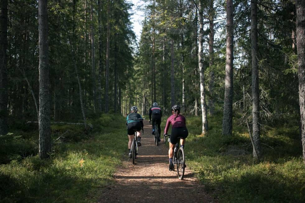 Nordmarka-sykkel-gravel-61