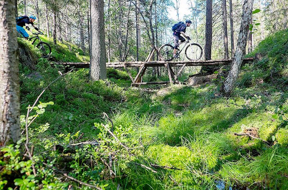 Østmarka vurderes som nasjonalpark
