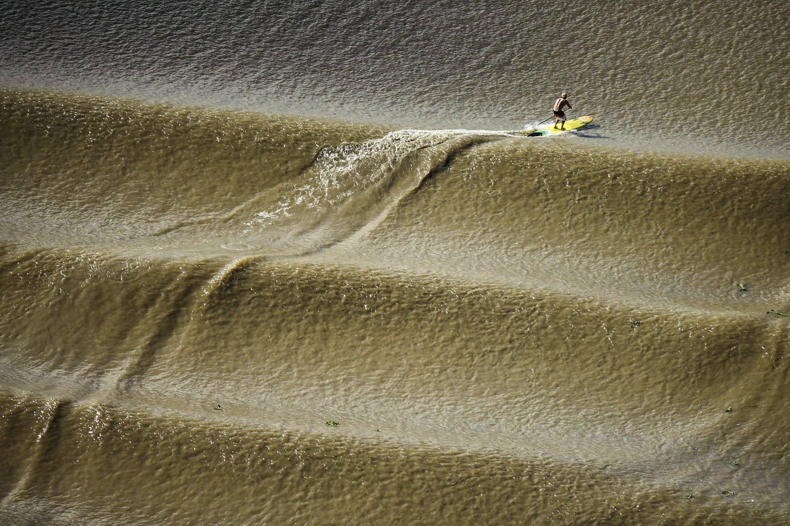 Vannmann Robby Naish får seg en særdeles lang tur på SUP-brettet i Amazonas-bølgen Pororoca. Bilde: Red Bull