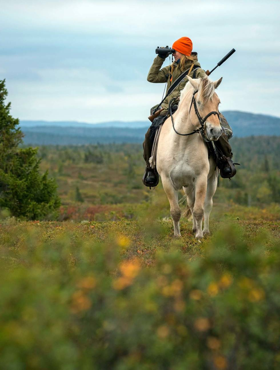 Reinsjakt-med-hest-4
