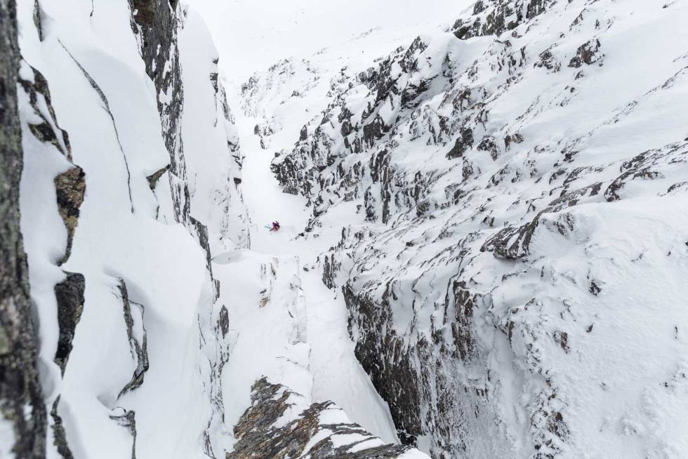 Renner-i-Norge-øksehogget