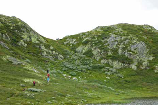 Silekdalsnutane turguide Rauland Telemark
