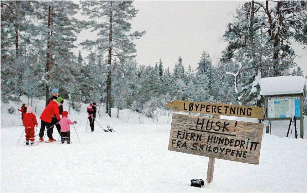Ski-på-Toplandsheia-og-Øynaheia-Torolf-Kroglund-2