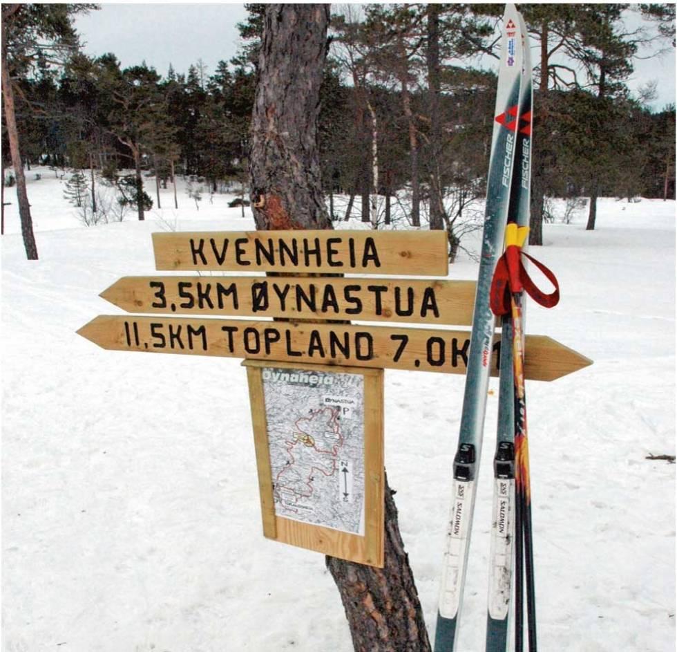 Ski-på-Toplandsheia-og-Øynaheia-Torolf-Kroglund-4