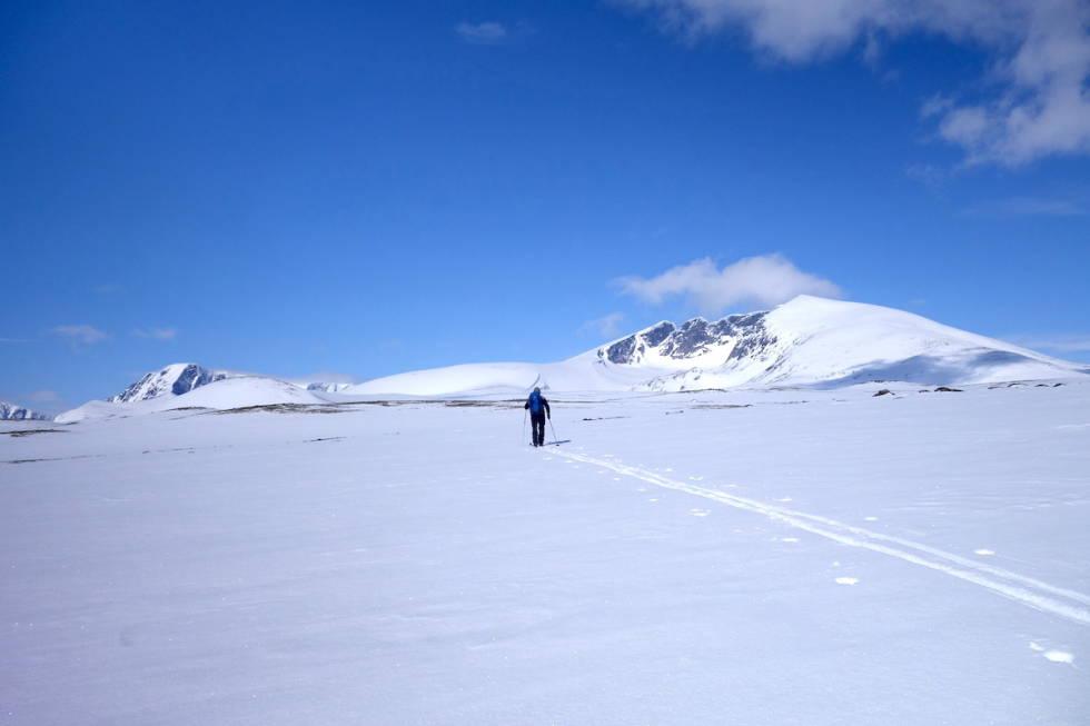 skitur Snøhetta Dovrefjell