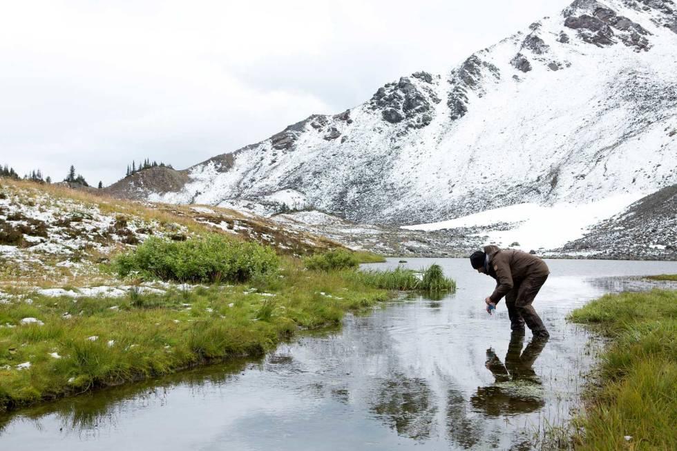 Snøgeit-jakt-i-Canada-7