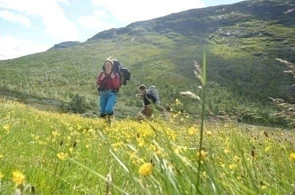 sommerens fjelltur