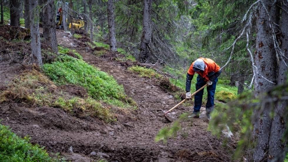 Bygger 1.5 km blågradert sykkelsti i Ål