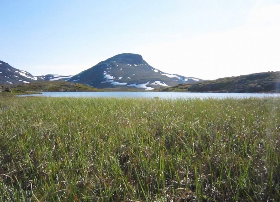 fjelltur til suletind tyin filefjell