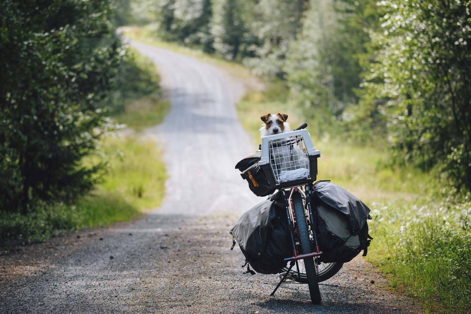 Sykkeltur-med-packraft-til-Fossvannet-2