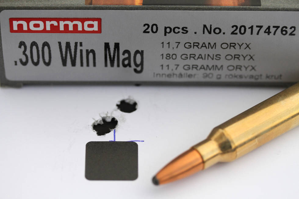 Test-av-magnumpatroner-8
