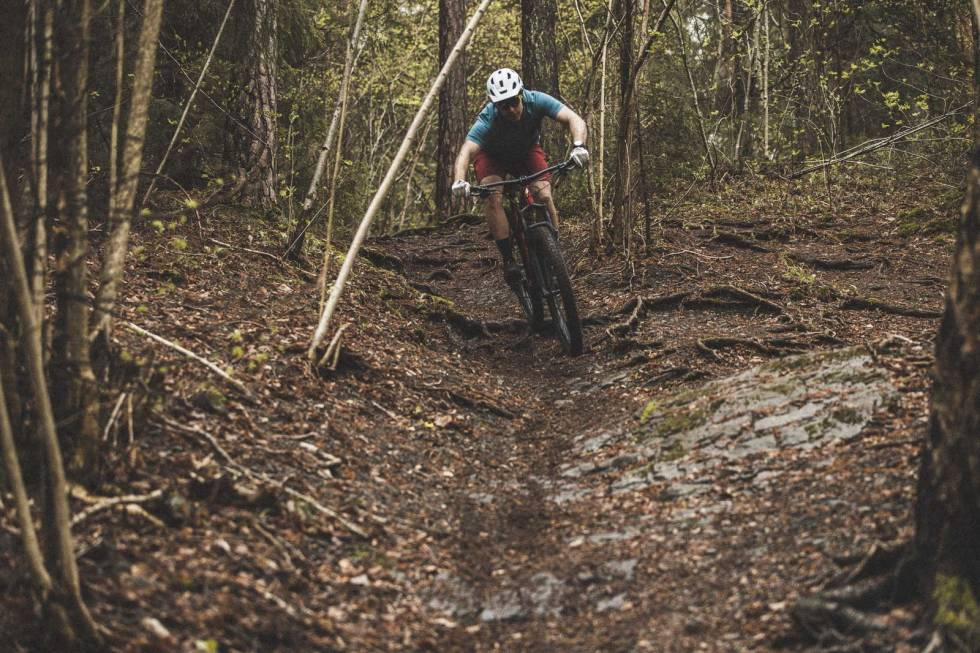 test specialized comp 2021