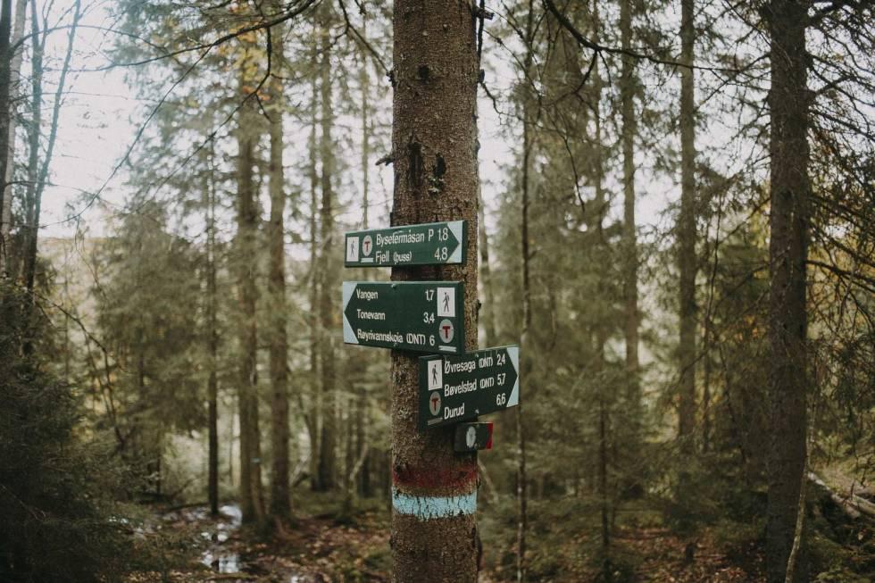 ØSTMARKA: Det er mange veier til Vangen. Foto: Kristoffer H. Kippernes