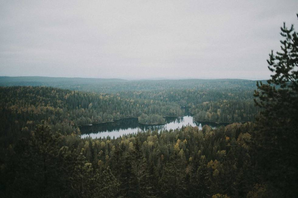 tonevann østmarka