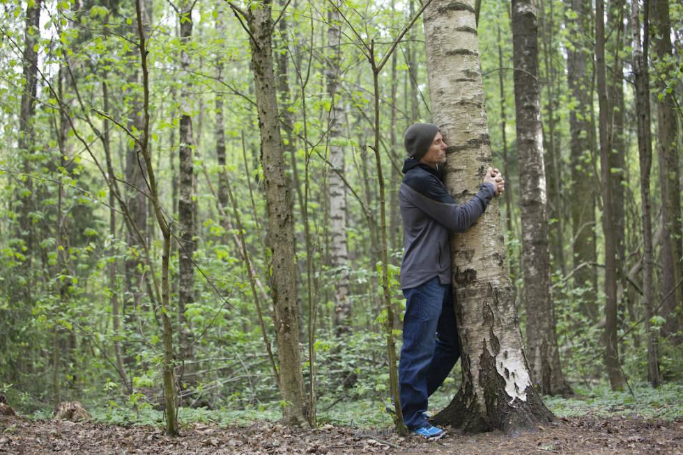 INNAFOR: Det er lov å klemme trær, sier Lars Gilberg. Foto: Ellen Jarli