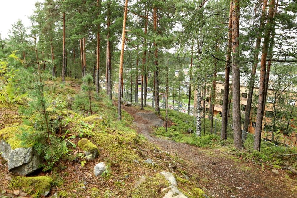 Her anlegges det doseringer i Kolibriløypa ved Ingieråsen ungdomsskole i Oppegård. Foto: Cato Symrebu