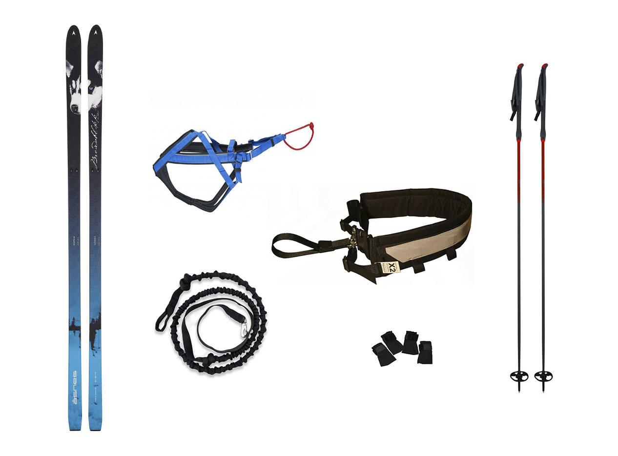 utstyr til snørekjøring med hund