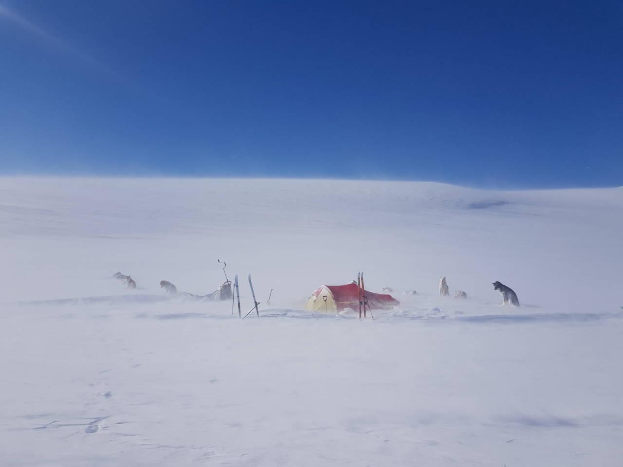 værfast i fjellet snøstorm Kjell Harald Myrseth hundekjøring