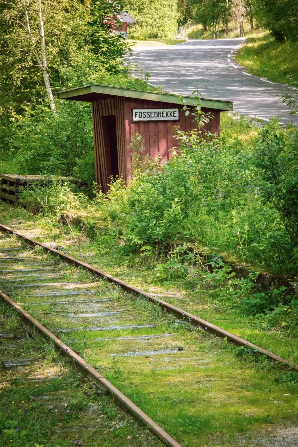 Veggli-Imingfjell-Rødberg-Sykling-4.1