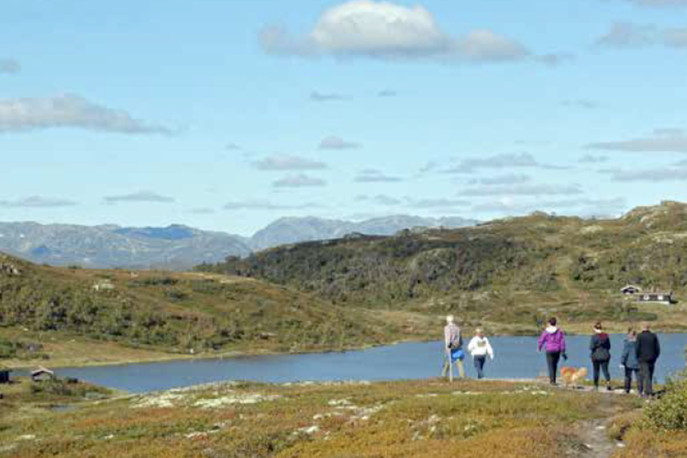 Oksatjønn turguide Rauland Telemark