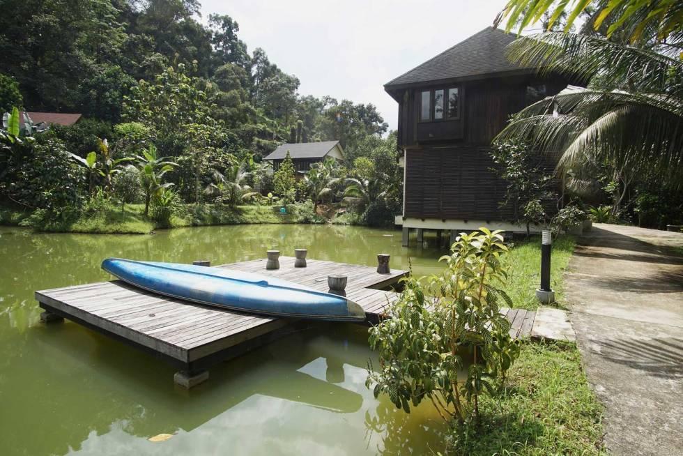Villsvinjakt-i-Malaysia-9