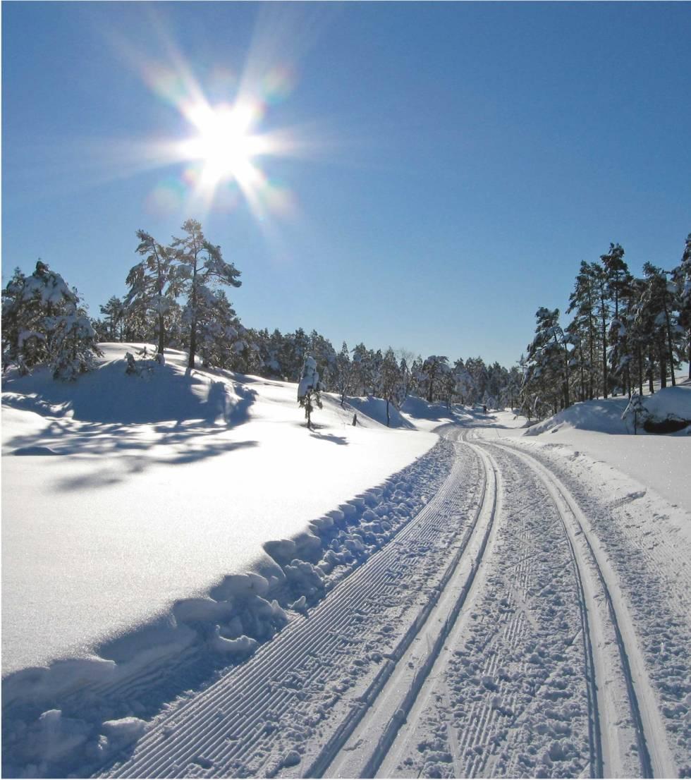 Vinter-i-Kristiansandsområdet-Lars-Verket-3