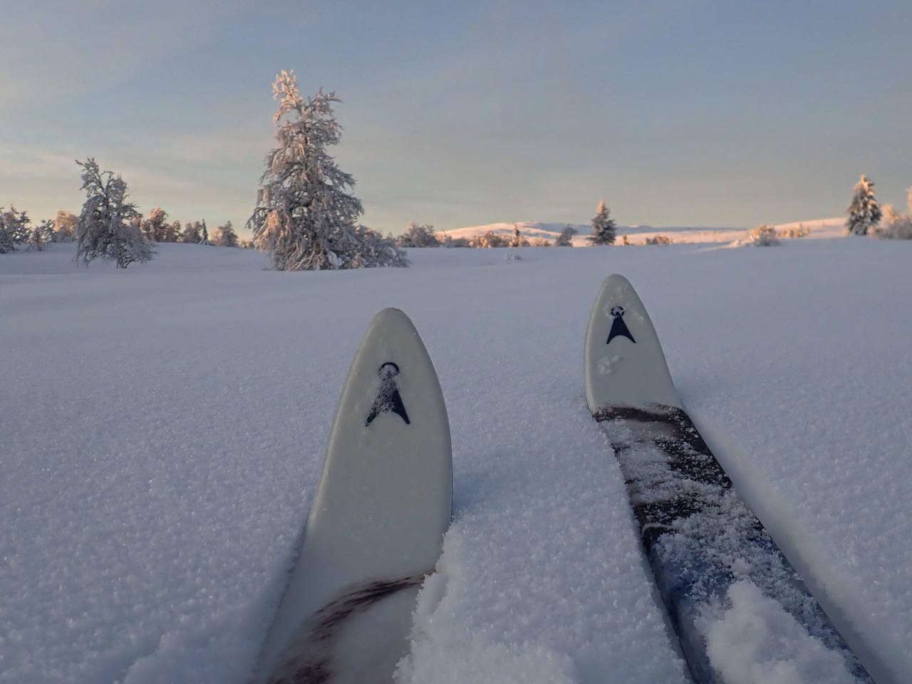 ØYERFJELLET: Fra Skjelbua tusler jeg gjennom løssnøen opp fjellsiden på overraskende hard snø. Foto: Bo Lindblad