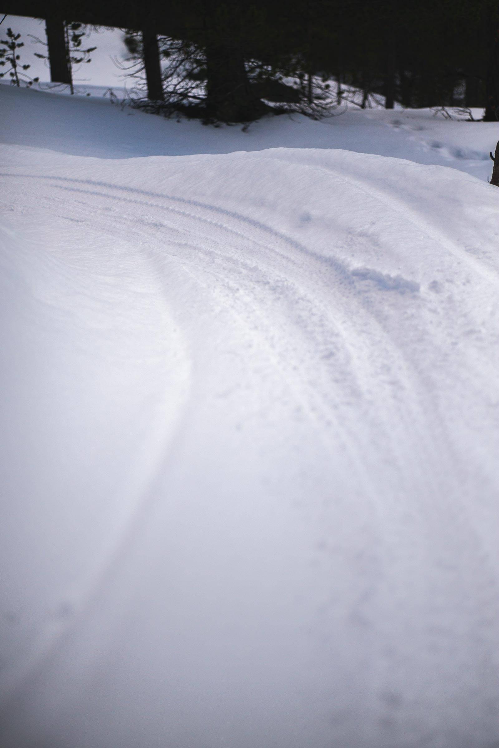 Vintersykling-Fatbike-Alta-4