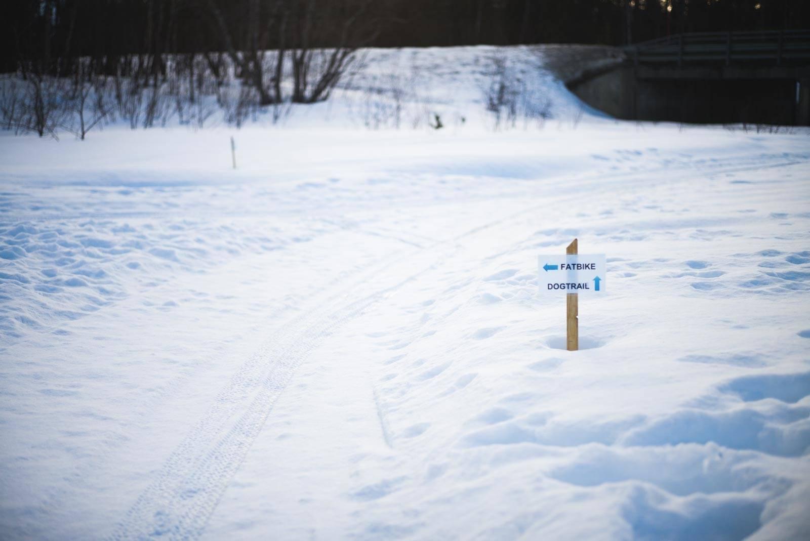 Vintersykling-Fatbike-Alta-5
