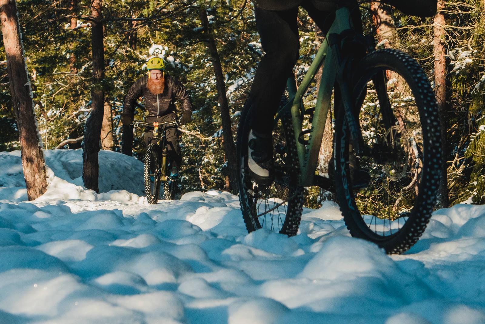 Piggdekk på sti stisykling vinter bilde: Christian Nerdrum