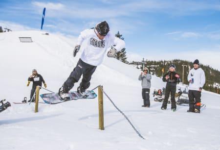 Foto: Process Films/Snowboardforbundet