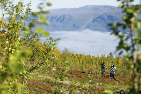 Sykkelparadiset Lyngen
