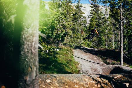 Flyt og hopp i stiene i Trysil Bike Arena. Foto: Sjur Melsaas