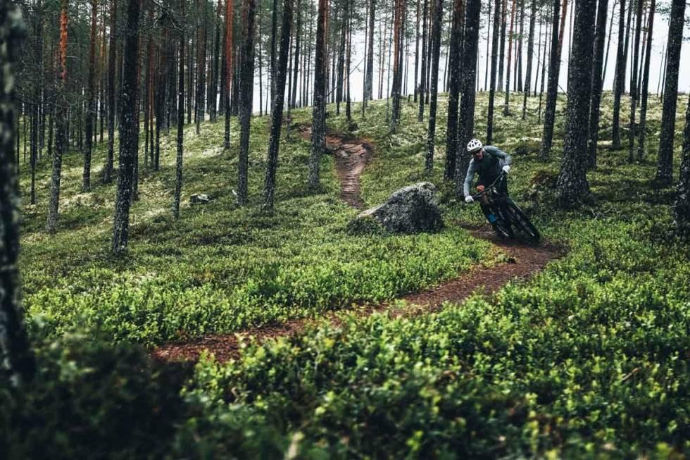 Trysilmarka har et fantastisk nettverk av genuine stiopplevelser som venter på deg. Foto: Sjur Melsaas